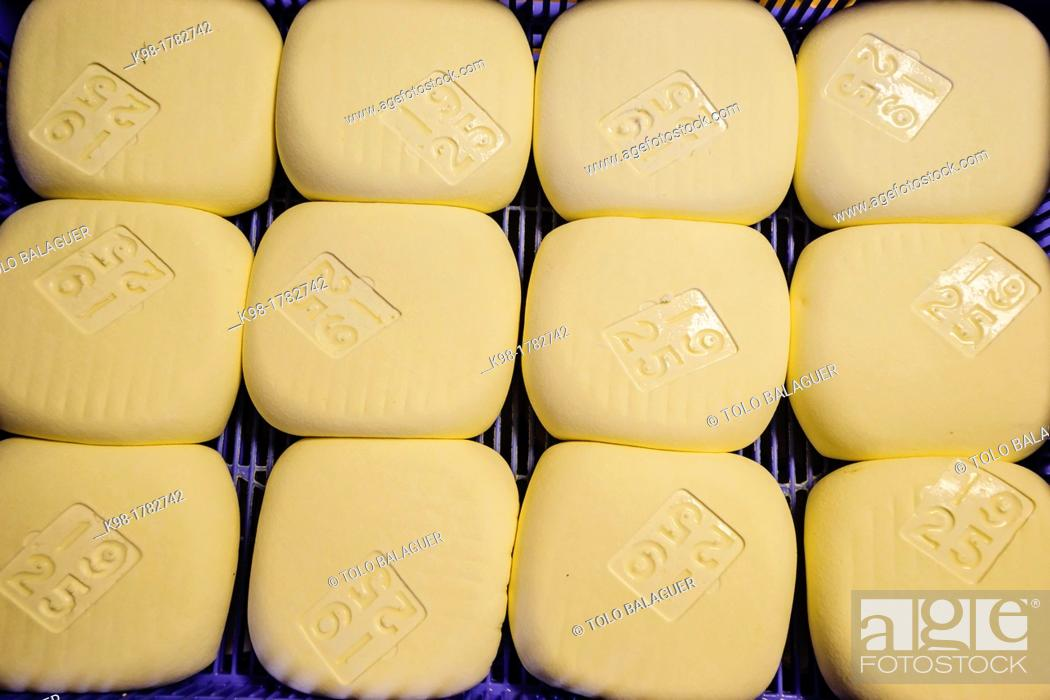 Stock Photo: Hand-made cheese Binigarba - denomination of origin Mahon craftsman-farm Binigarba, Ciutadella, Menorca, Balearic Islands, Spain, Europe.