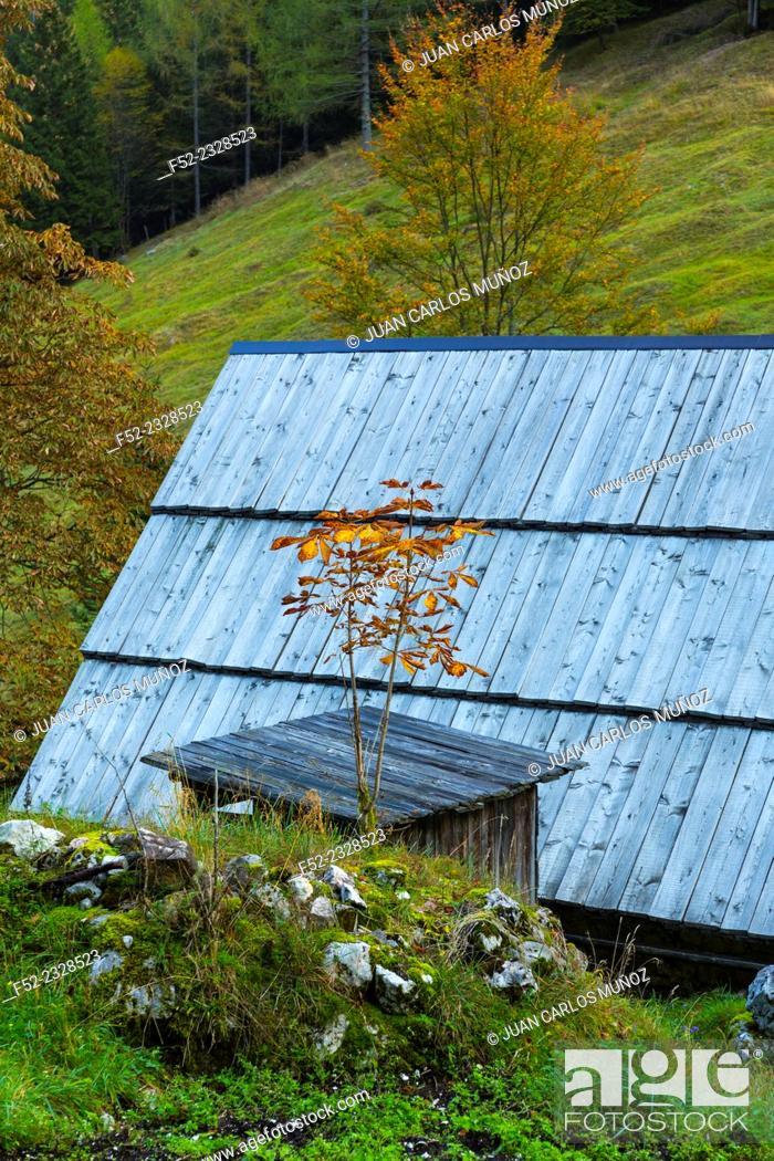 Stock Photo: Triglav National Park, Trenta Valley, Julian Alps, Municipality of Bovec, Slovenia, Europe.