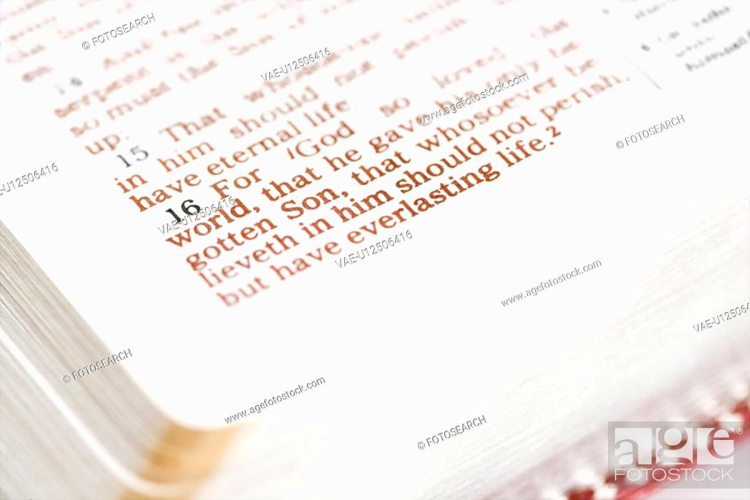 Stock Photo: Selective focus of verses in open Holy Bible.