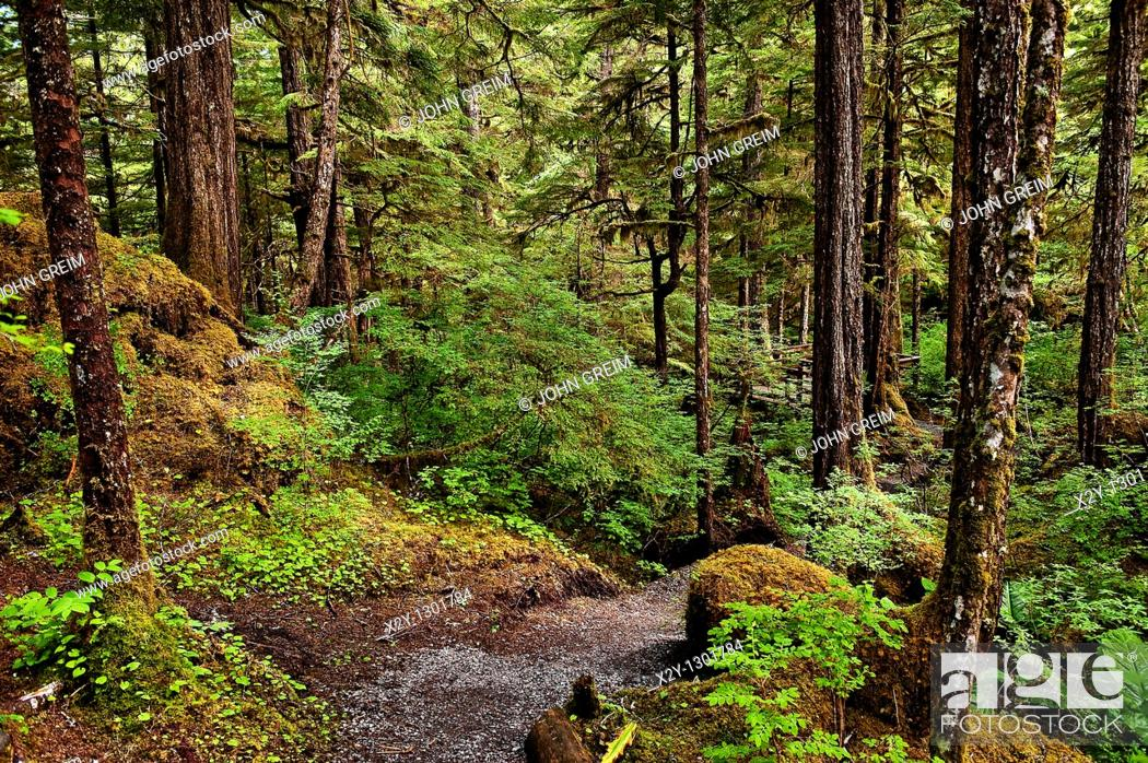 Stock Photo: Lunch Creek hiking trail, Tongass National Forest, Ketchikan, Inside Passage AK, Alaska, USA  Largest national forest in the USA.