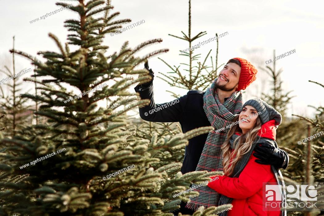Stock Photo: Young couple choosing a christmas tree from forest.