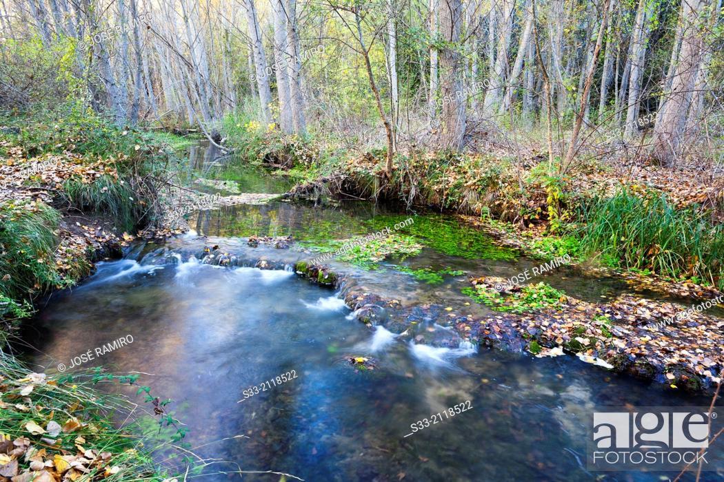 Stock Photo: Dulce river in Aragosa. Guadalajara. Castilla la Mancha. Spain.