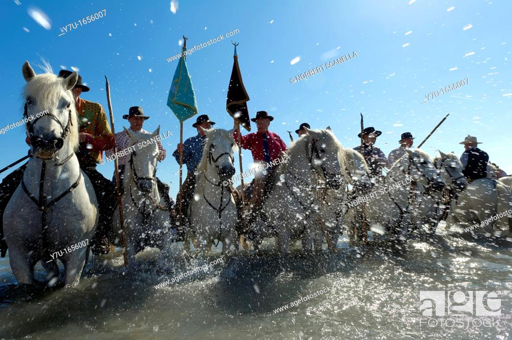 Stock Photo: Europe, France, Bouche-du-Rhone, 13, Saintes-Marie-de-la-Mer, pilgrimage of gypsies, gardians.