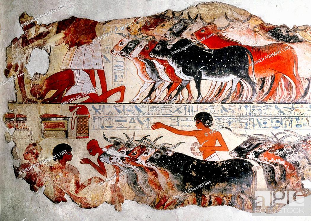 Stock Photo: A fragment of a painting from the tomb of Nebamun.