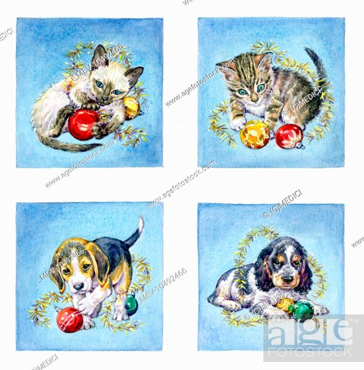 Stock Photo - Siamese Kitten, Tabby Kitten, Beagle Puppy, Spaniel Puppy wih Christmas decorations,