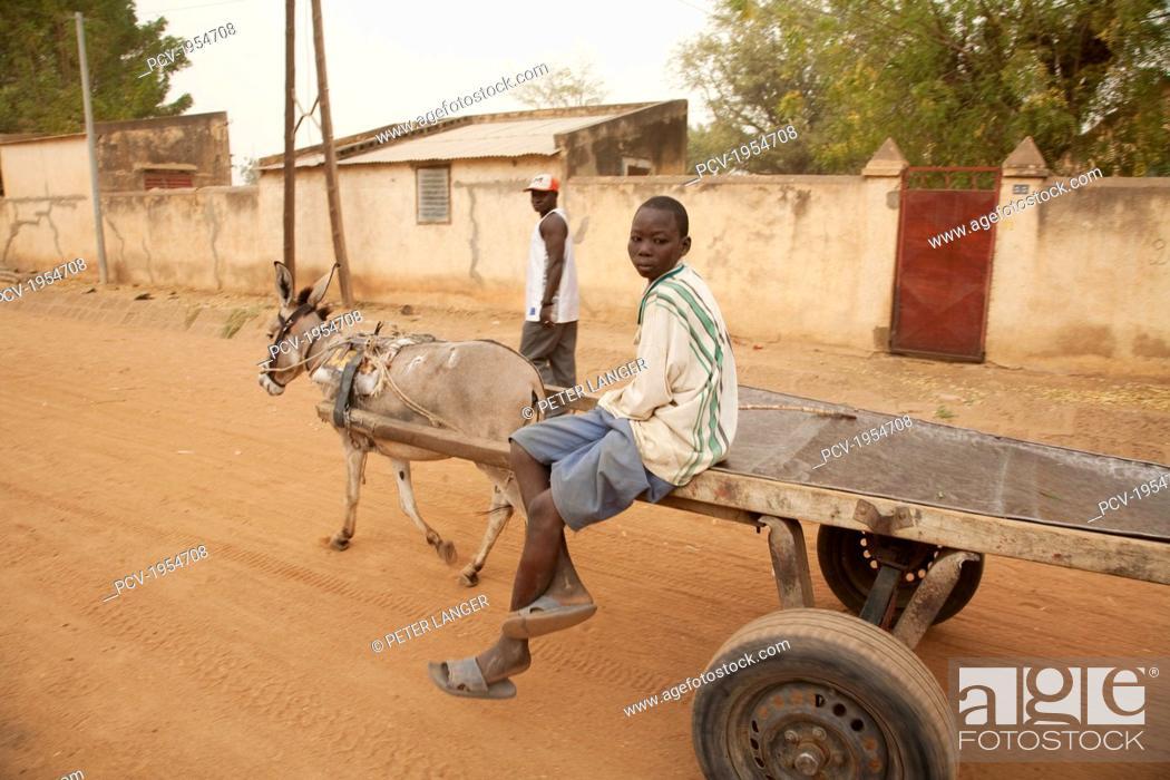 Stock Photo: Boy on a donkey cart in Segou, Mali.