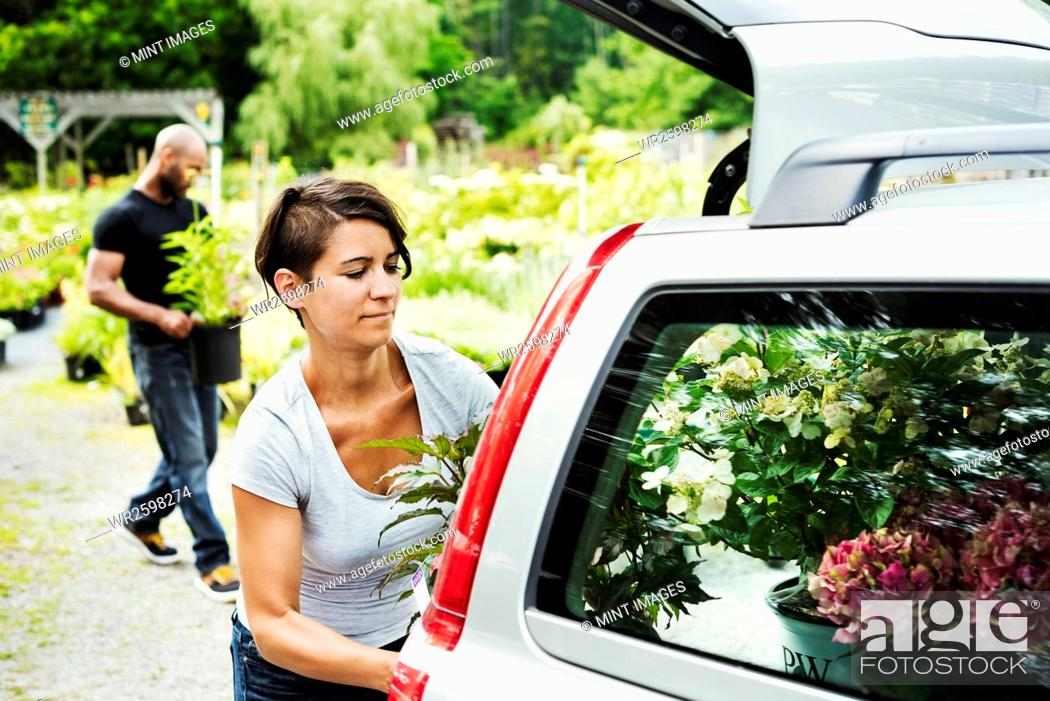 Stock Photo: Car parked at a garden centre, a woman loading flowers into the boot.