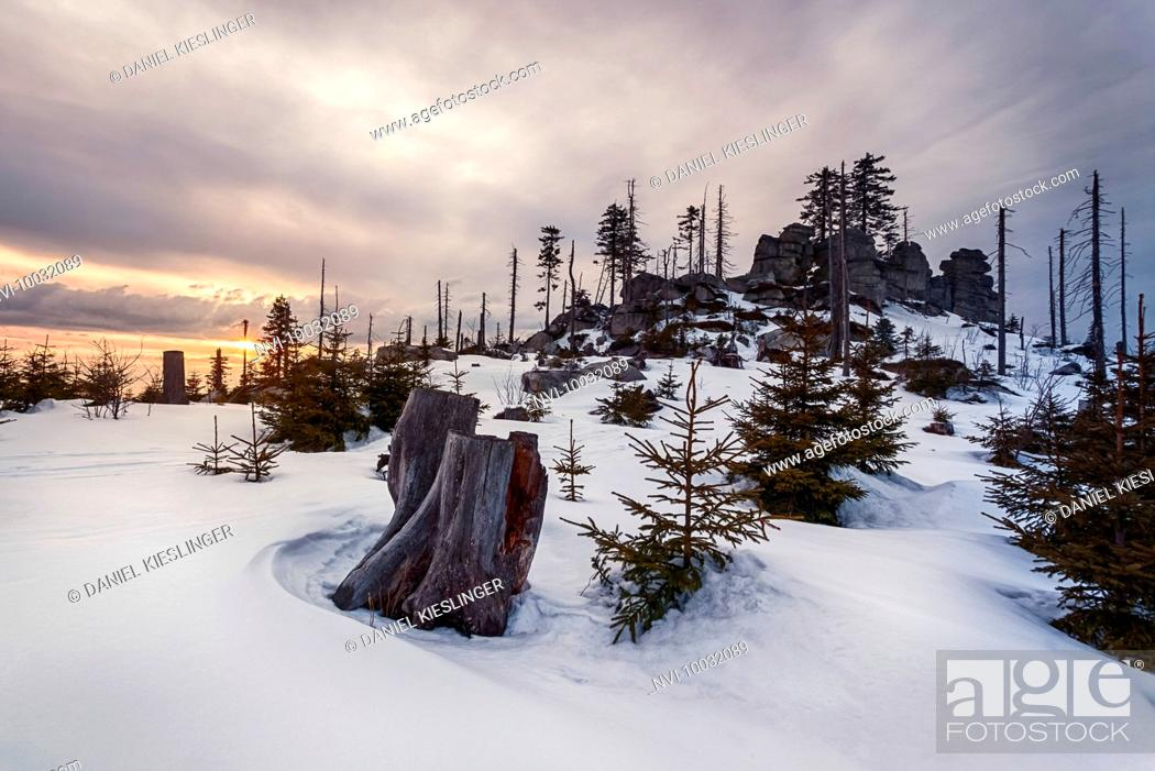 Stock Photo: Winter landscape at Dreisessel, Haidmühle, Bavarian Forest, Niederbayern, Bavaria, Germany.
