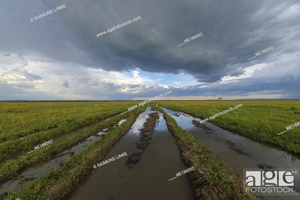 Stock Photo: Flooded road after rain, Masai Mara National Reserve, Kenya, Africa.