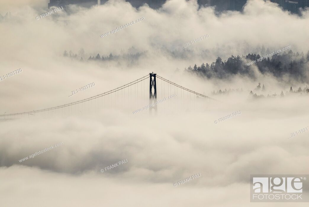 Stock Photo: Lions Gate bridge view from Cypress mountain lookout  In the fog  Vancouers Highrises in the background.