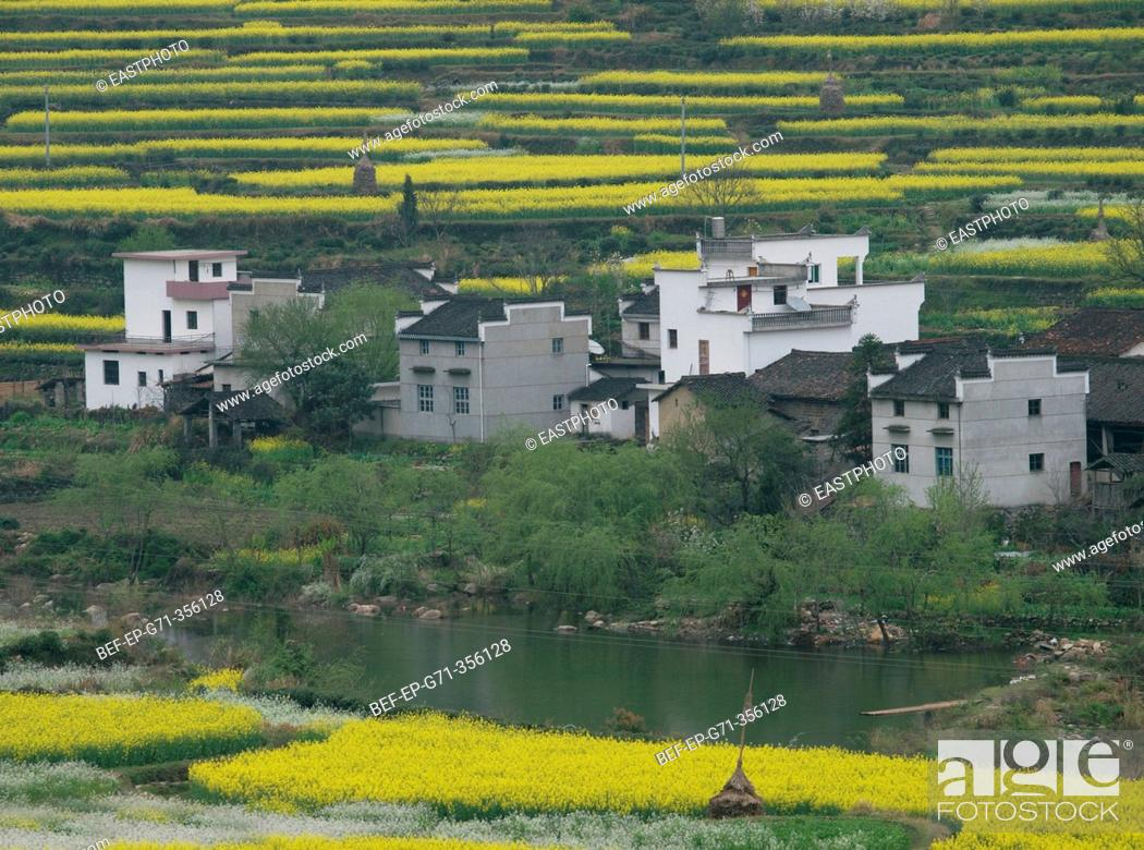 Stock Photo: a top view of villages in the field.