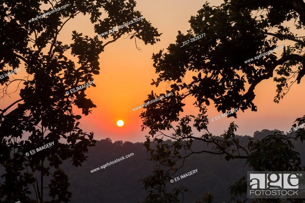 Stock Photo: Sunset over the Himalayan foothills seen through trees.