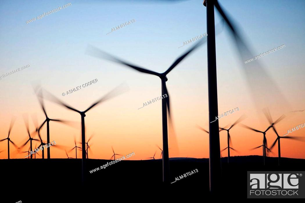 Stock Photo: Dawn over Whitlee wind farm south of Glasgow, Scotland, UK, is Europes largest onshore wind farm with 140 turbines. Dawn over Whitlee wind farm on Eaglesham.
