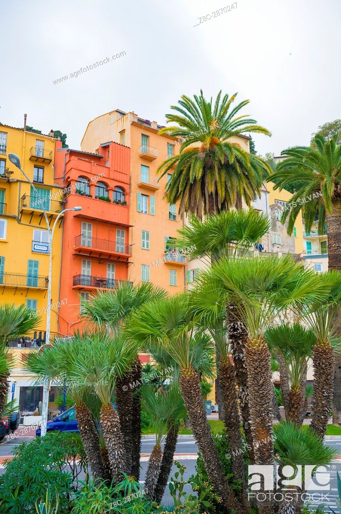 Stock Photo: Old Buildings and Palm Trees in City of Menton in Provence-Alpes-Côte d'Azur, France.