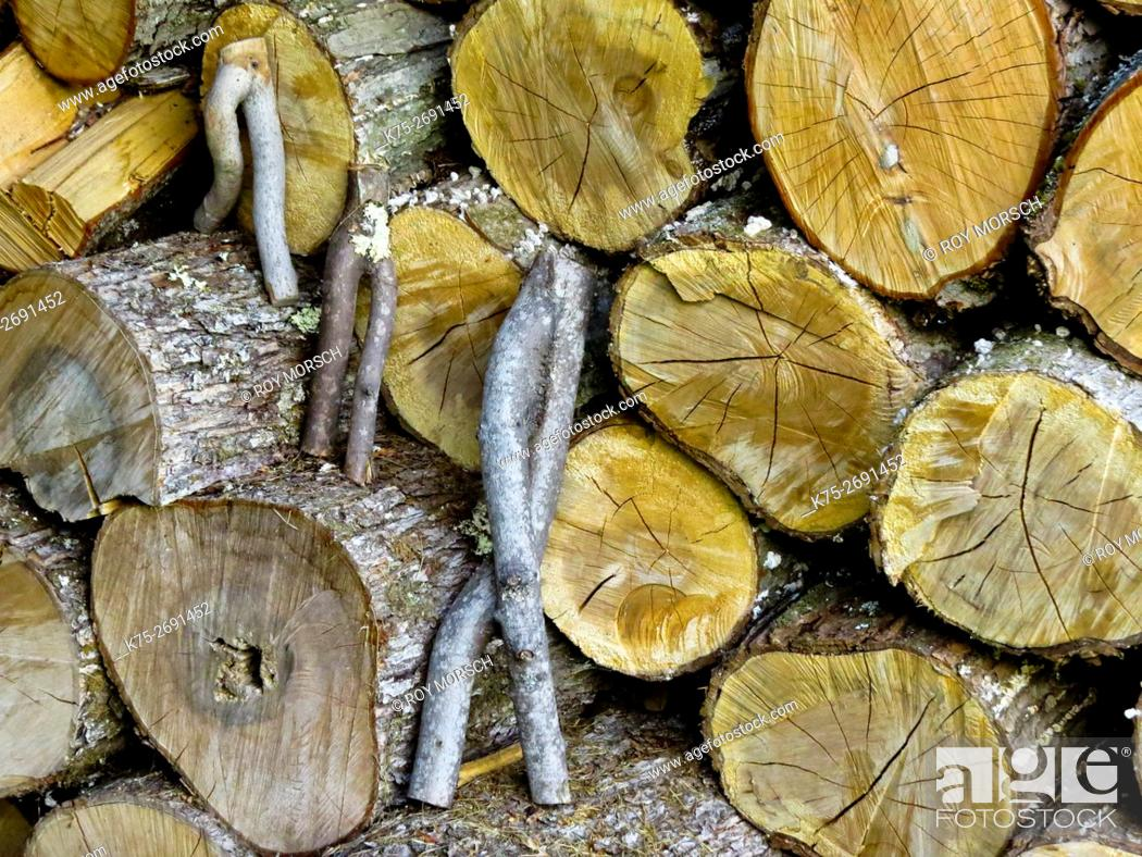 Stock Photo: Wooden figures in wood pile.