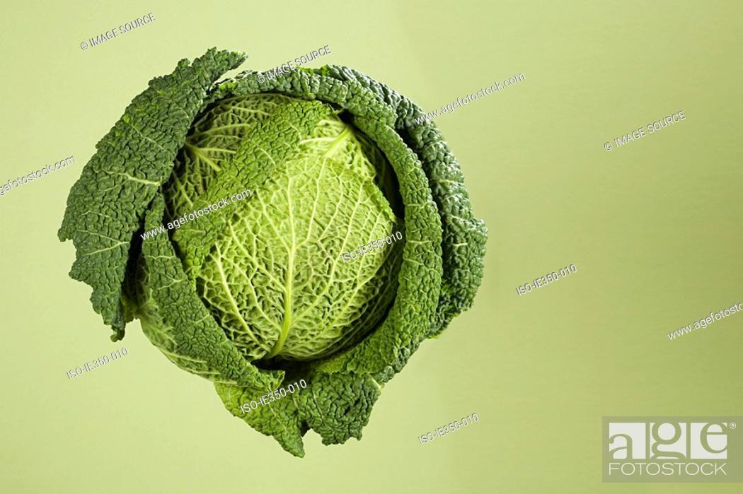 Stock Photo: Cabbage.