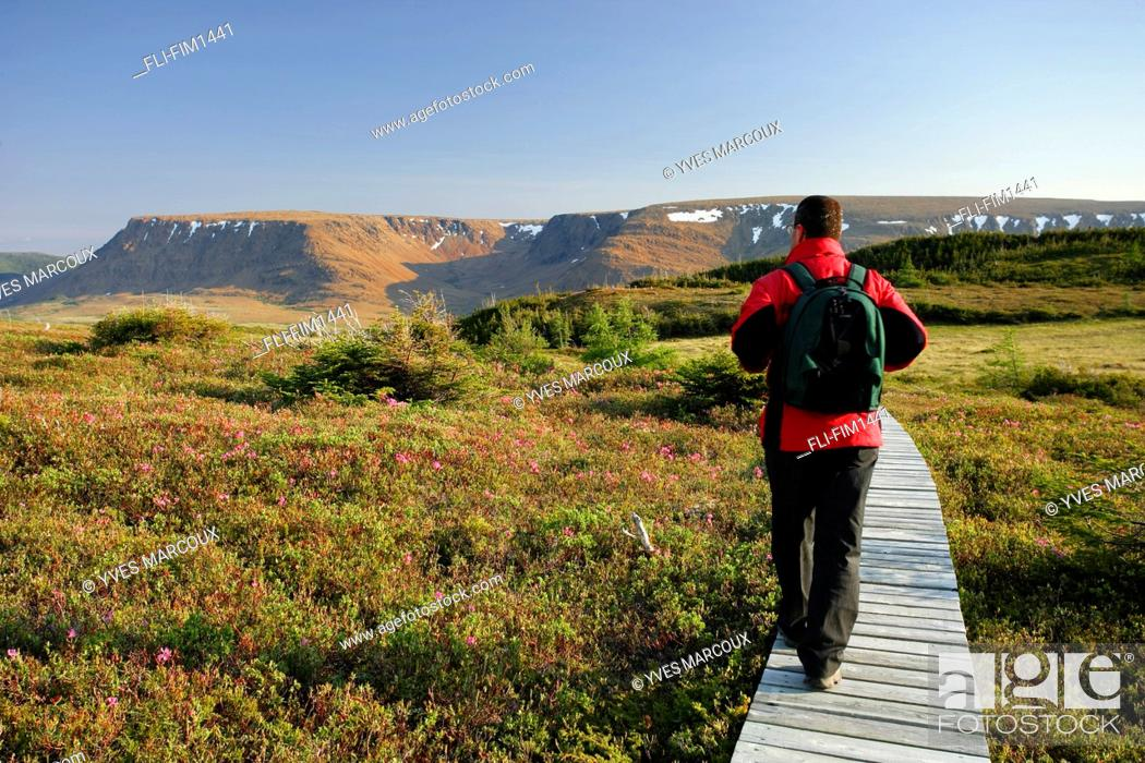 Stock Photo: Hiker on Lookout Trail and Tablelands, Gros Morne National Park, Newfoundland.