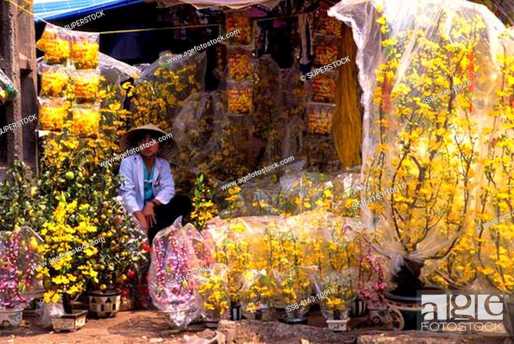 Vietnam ho chi minh city saigon chinatown ben thanh market scene stock photo vietnam ho chi minh city saigon chinatown ben thanh market scene silk flower stand mightylinksfo