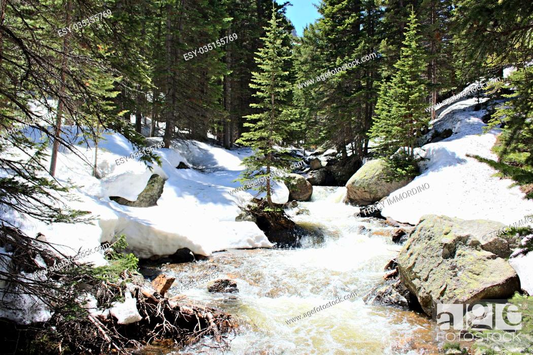 Stock Photo: The rapidly flowing waters of Glacier Creek in the forest of the Rocky Mountains National Park, Colorado, USA.