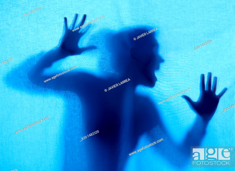 Stock Photo: girl's silhouette.