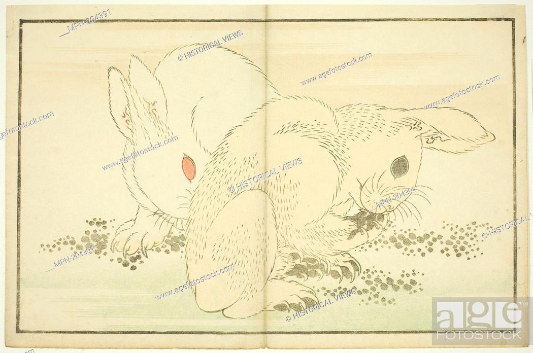 Stock Photo: Two Rabbits, from The Picture Book of Realistic Paintings of Hokusai (Hokusai shashin gafu) - c. 1814 - Katsushika Hokusai ?? ?? Japanese.