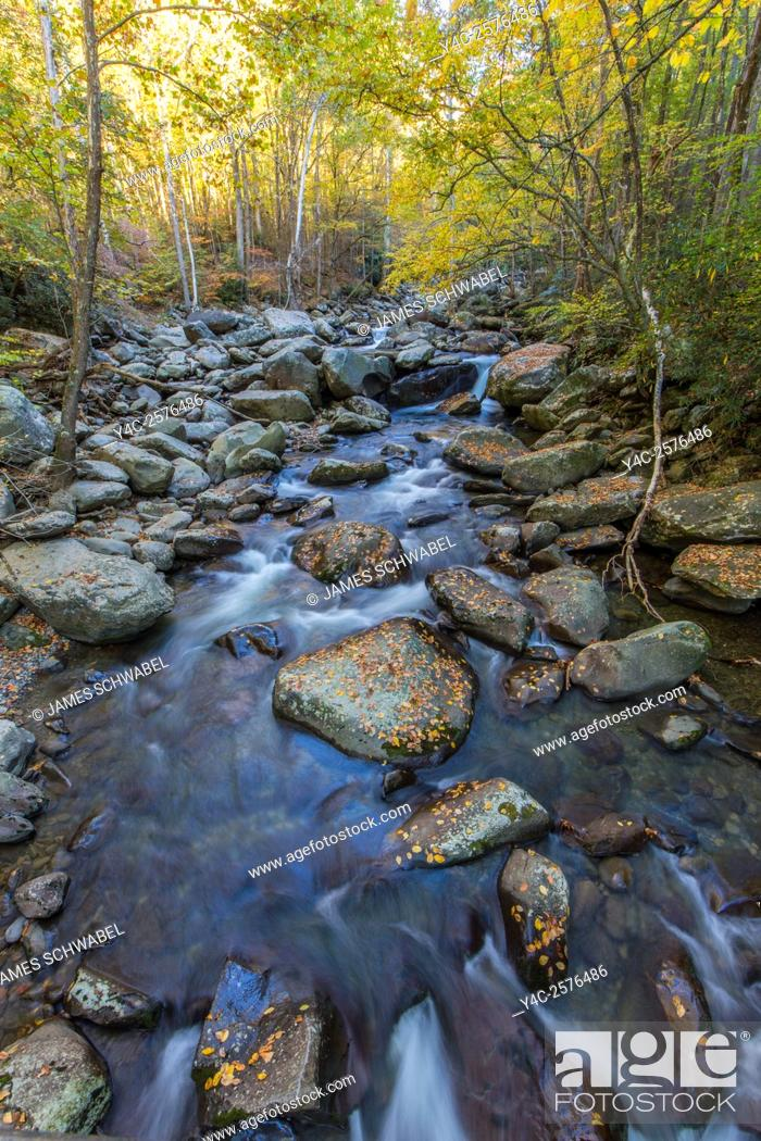 Stock Photo: Middle Prong Little pigeon River in the Greenbrier area of Great Smoky Mountains National Park Tennessee.