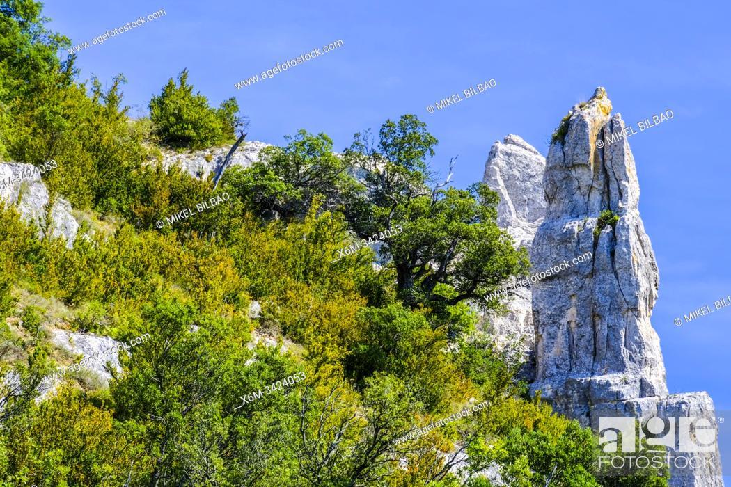 Stock Photo: Izki Natural Park. Alava, Basque Country, Spain, Europe.