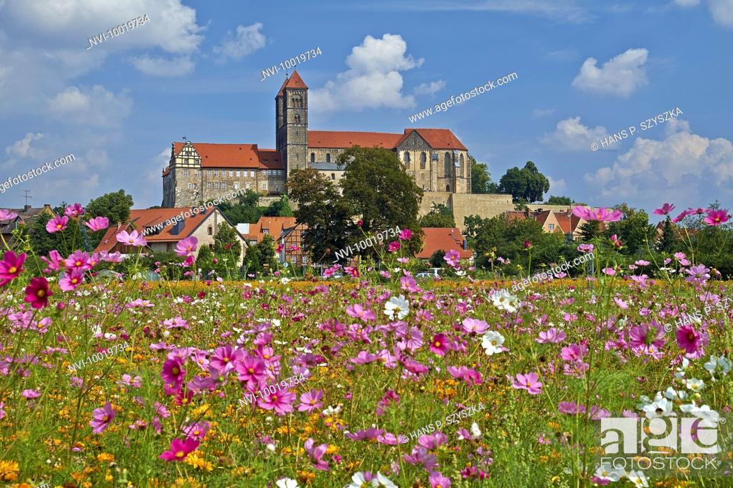 Stock Photo: Castle with St. Servatius collegiate church in Quedlinburg, Saxony-Anhalt, Germany.