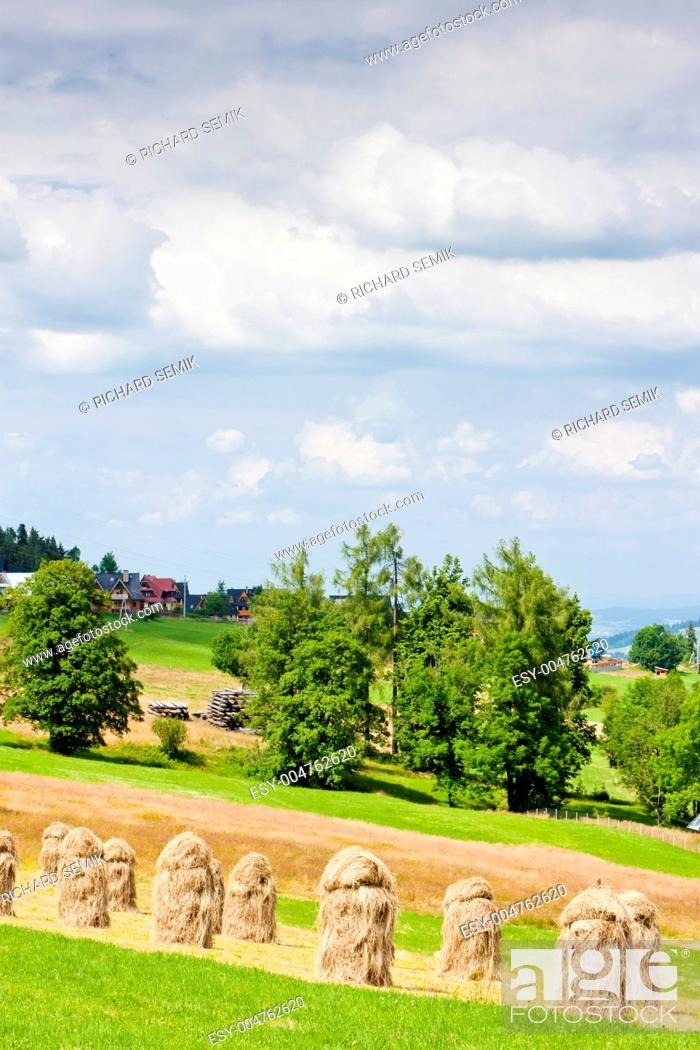 Stock Photo: landscape of Tatras near Zakopane, Poland.