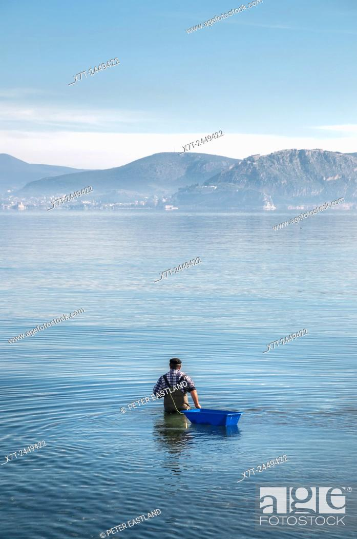 Stock Photo: Fishing for octopus in the bay of Nafplio, Argolid, Peloponnese, Greece.