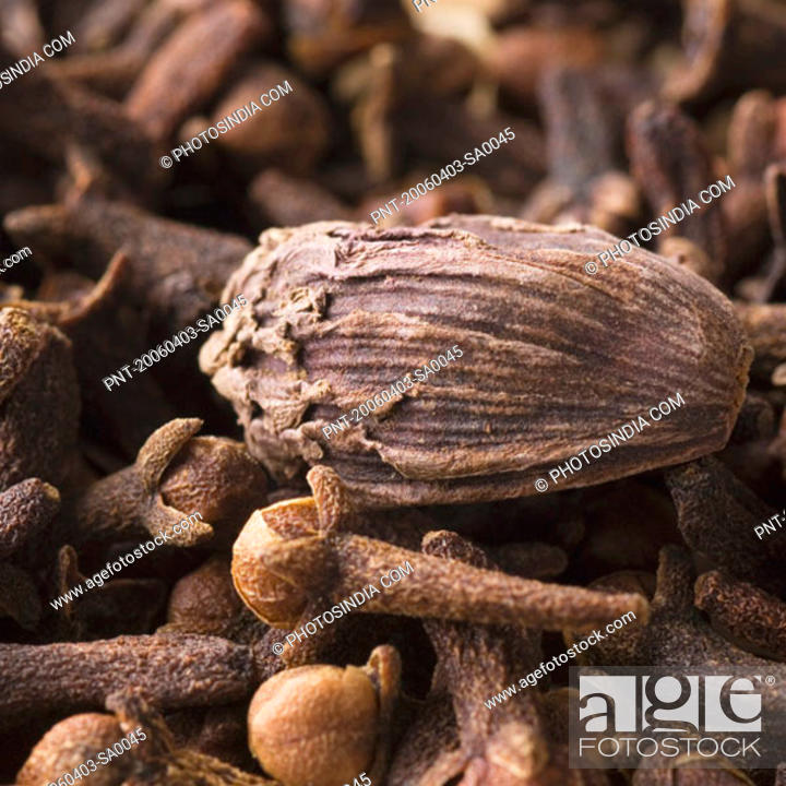 Stock Photo: Close-up of a Black Cardamom with cloves.