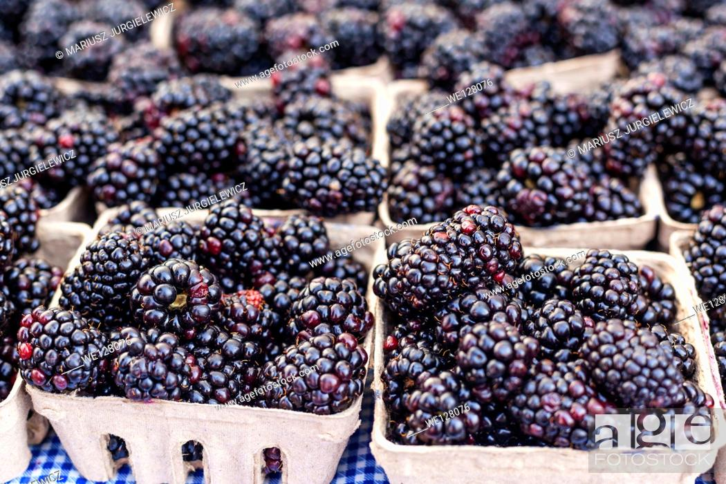 Stock Photo: Boxes of organic blackberries for sale at local farmers market.