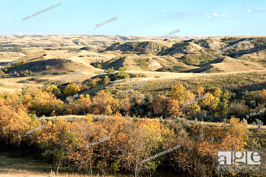 Stock Photo: Rolling hills.