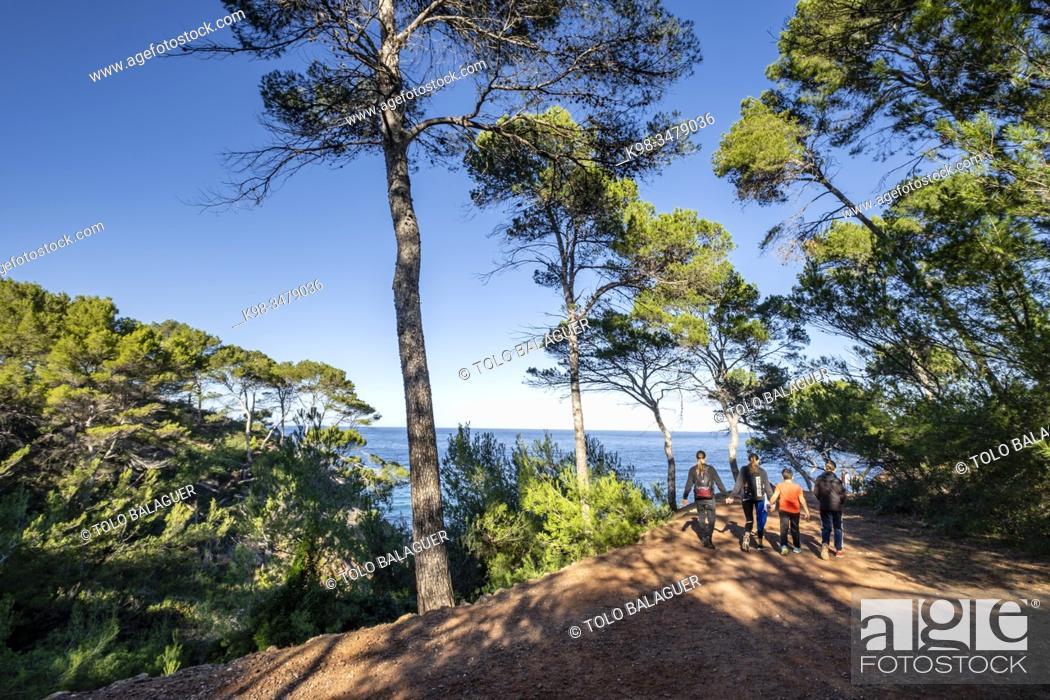 Stock Photo: senderismo en Volta des General, Paraje Natural de la Sierra de la Tramuntana, Banyalbufar, Mallorca, Balearic Islands, Spain.