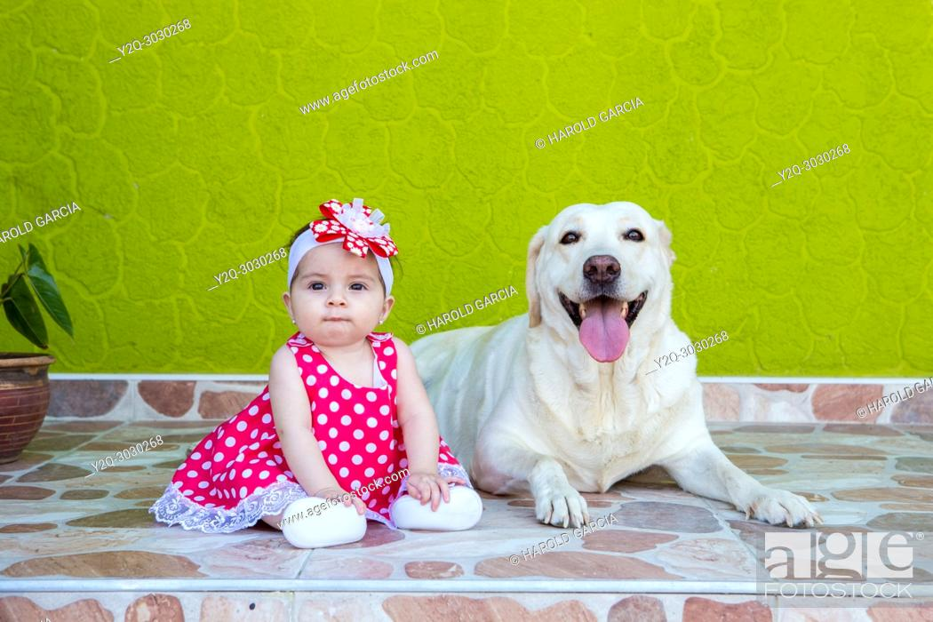 Imagen: little girl in a red and white polka-dot dress with a labrador dog.