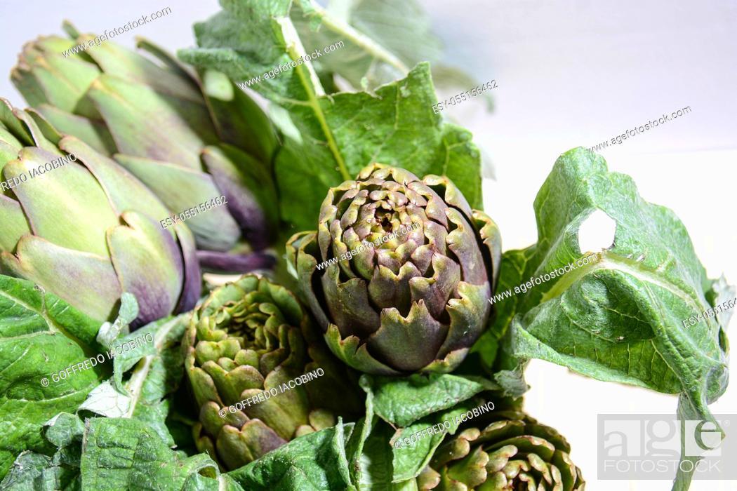 Stock Photo: artichokes of the Italian countryside.