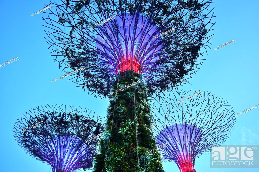 Stock Photo: Singapore, Gardens by the Bay.