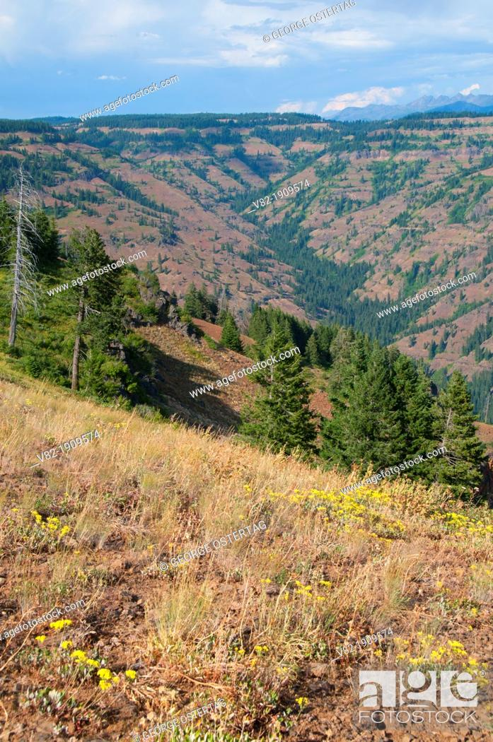 Stock Photo: McGraw Creek from Hells Canyon Overlook, Hells Canyon National Recreation Area, Hells Canyon National Scenic Byway, Oregon.