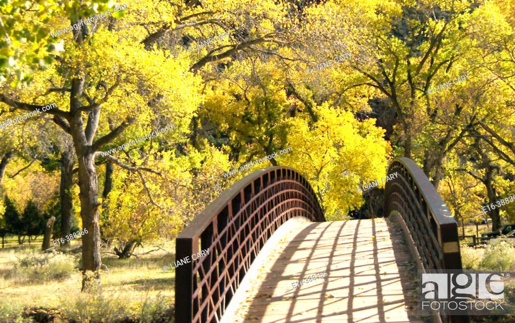 Stock Photo: Autumn bridge. Zion National Park in Utah, USA.