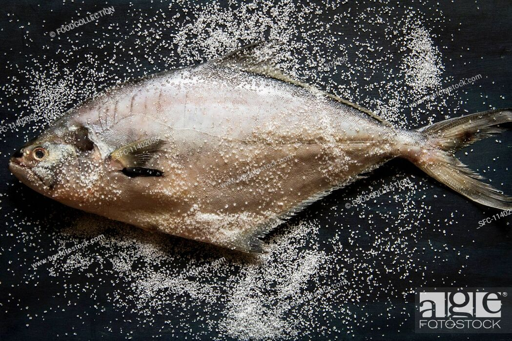 Imagen: A whole tuna fish with sea salt (seen from above).
