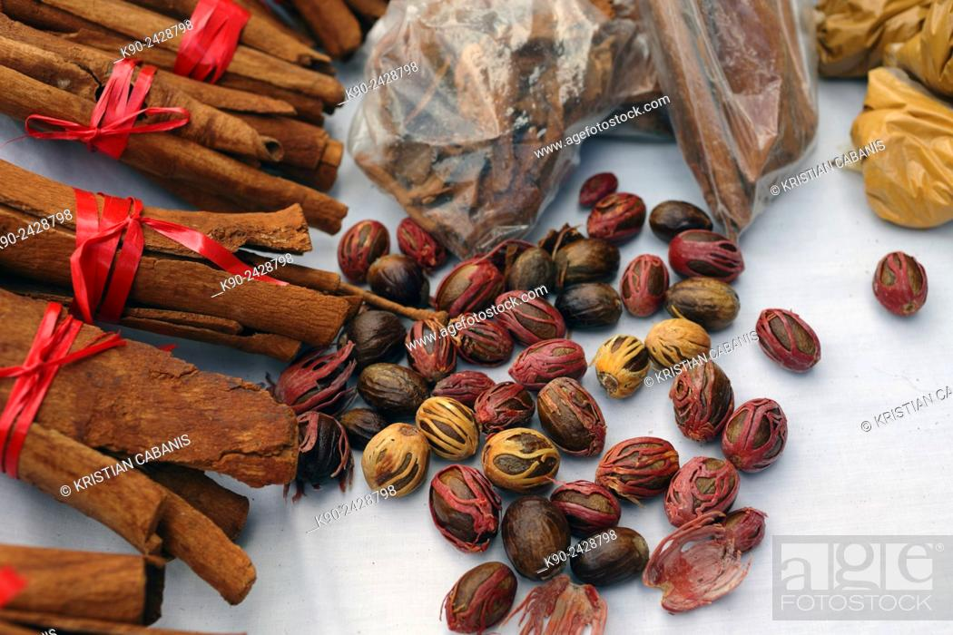 Stock Photo: Typical island spices - cinnamon and nutmeg, Dominica, Windward Islands, Lesser Antilles, Eastern Caribbean Islands, West Indies, Americas.