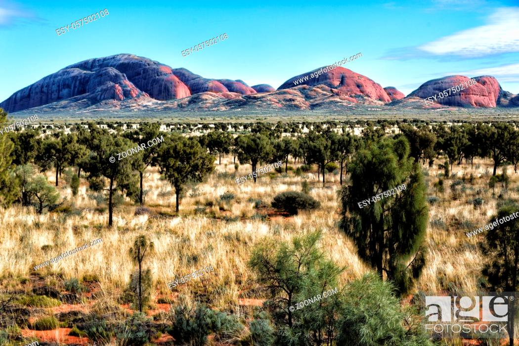 Stock Photo: in australia the concept of wilderness environment in the landscape outback.