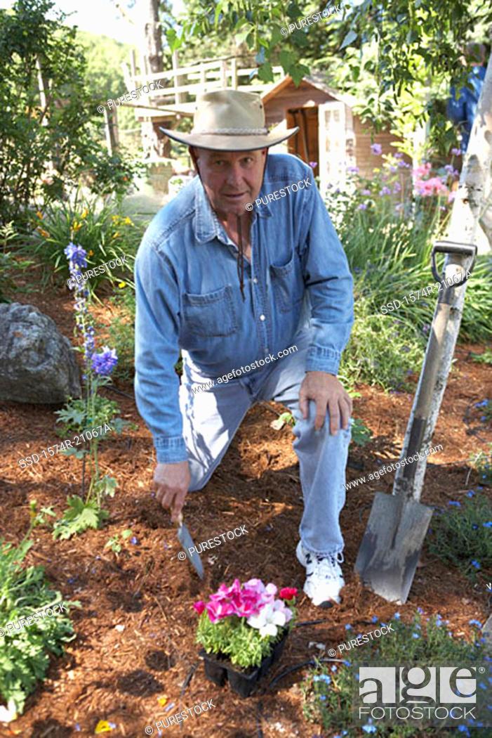 Stock Photo: Portrait of a mature man gardening.