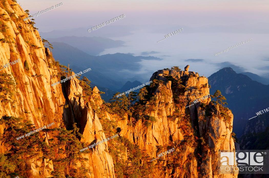 Stock Photo: Orange dawn glow on Monkey watching the Sea of fog Peak at Huangshan China.