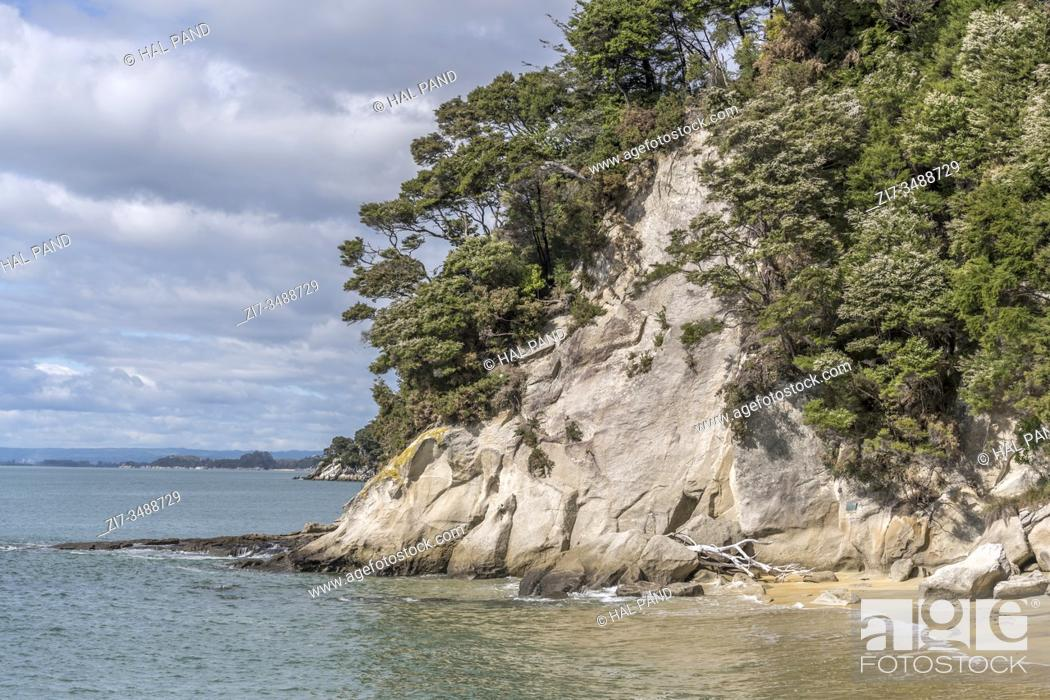 Stock Photo: landscape with lush rain forest vegetation, worn rocks and sand, shot in bright spring light at Observation beach, Abel Tasman park, South Island, New Zealand.