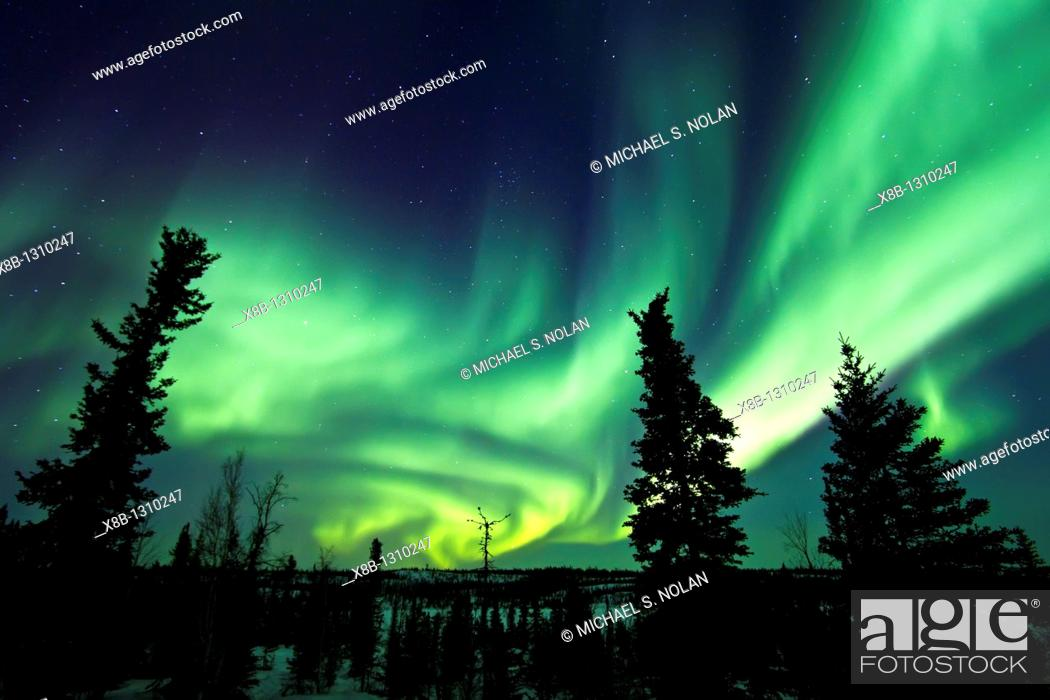 Stock Photo: Aurora Borealis Northern Polar Lights over the boreal forest outside Yellowknife, Northwest Territories, Canada, MORE INFO The term aurora borealis was coined.