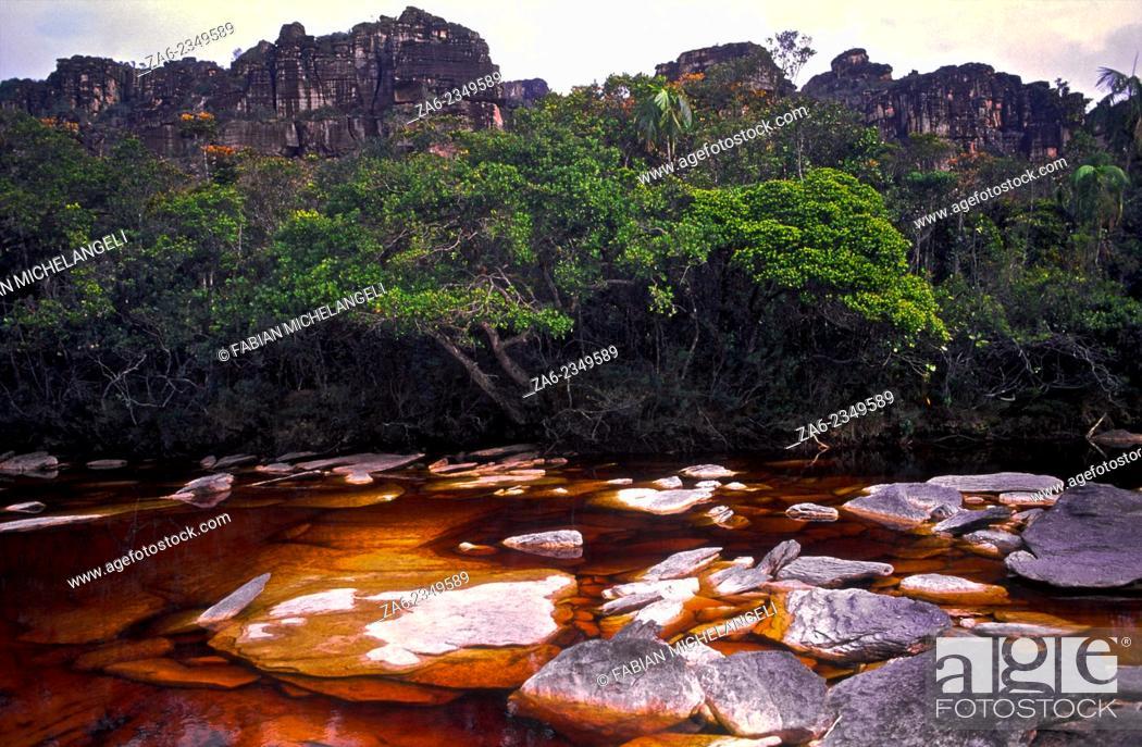 Imagen: Tea-colored stream on the Auyantepuy summit. Canaima National Park, Bolivar State. Venezuela.