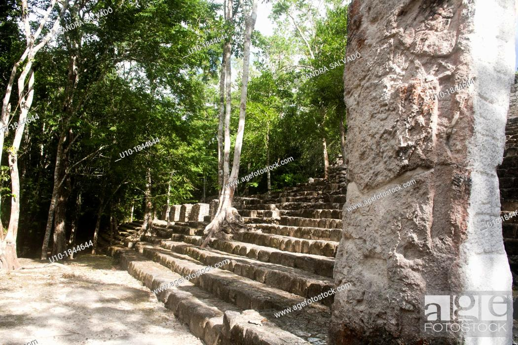 Stock Photo: Archeological site Calakmul, Yucatan Peninsula, Mexico.