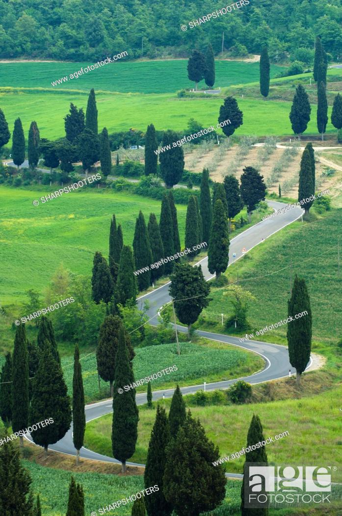 Stock Photo: Road from Pienza to Montepulciano, Monticchiello, Val d'Orcia, Siena province, Tuscany, Italy.