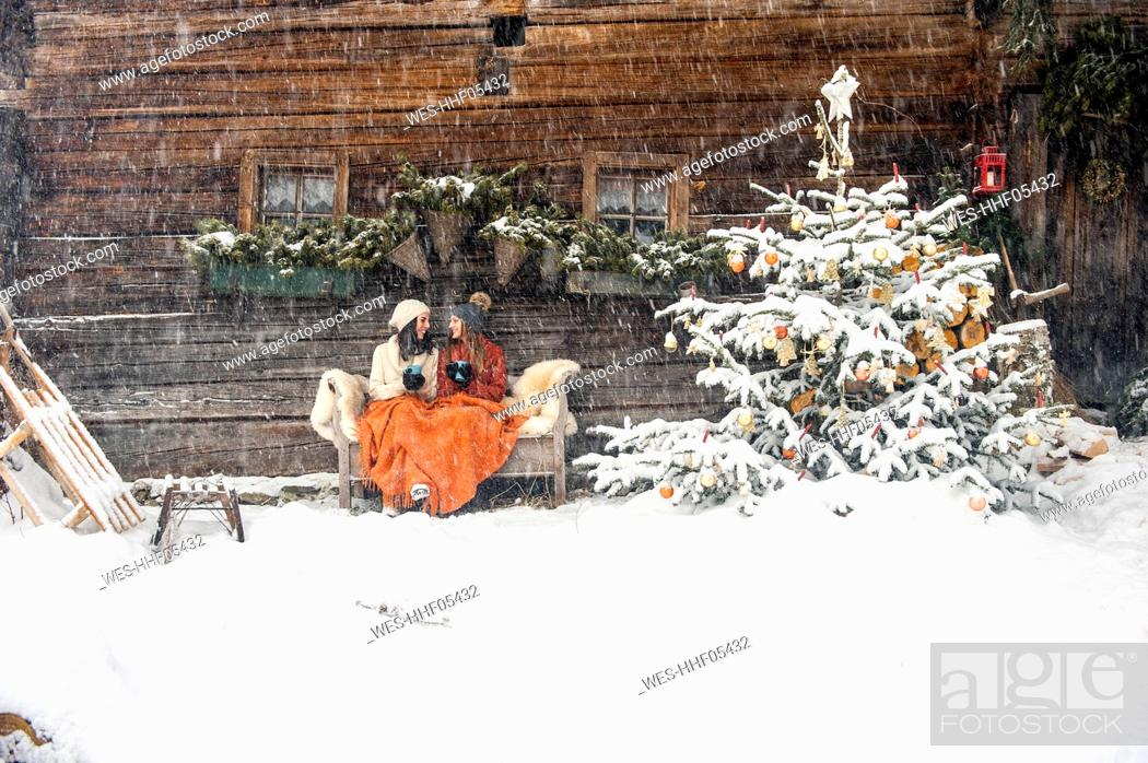 Stock Photo: Friends sitting on bench by Christmas tree in front of mountain hut.